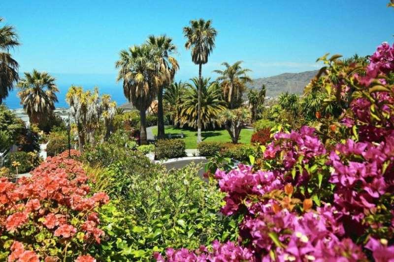 Bungalows villen la palma jardin la palma kanaren t rkei for La palma jardin